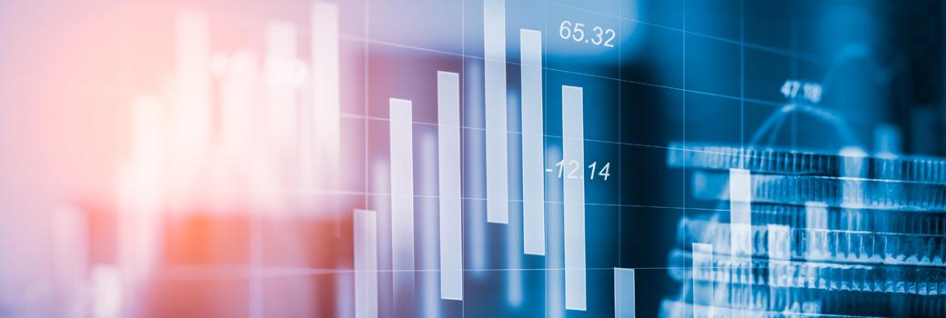 Financial data view